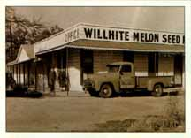 Willhite Seed, Inc.