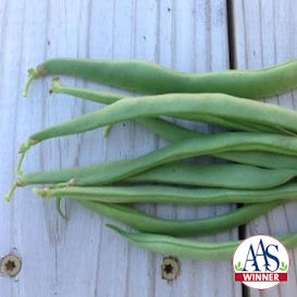 Greencrop Bean