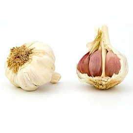 Music Garlic (Hardneck)  ***NEW CROP 06-07/2021***