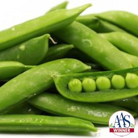 Edible Pod Peas