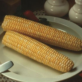 Honey and Cream Corn