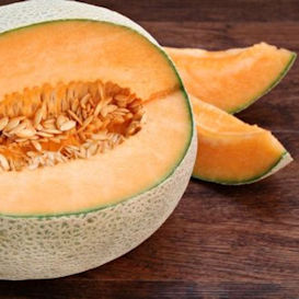 Topmark Cantaloupe **SOLD OUT FOR 2021**