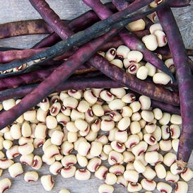 Southern Peas (Cowpeas)