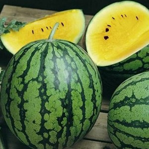 Yellow Petite Watermelon